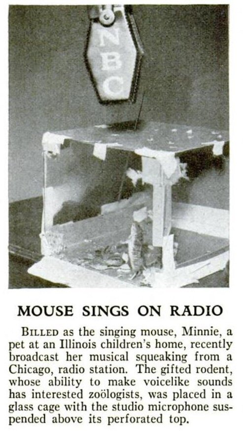 Minnie the Singing Mouse