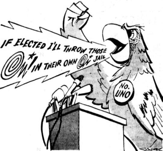 Eleuterio the Parrot was elected to a city council in Brazil.