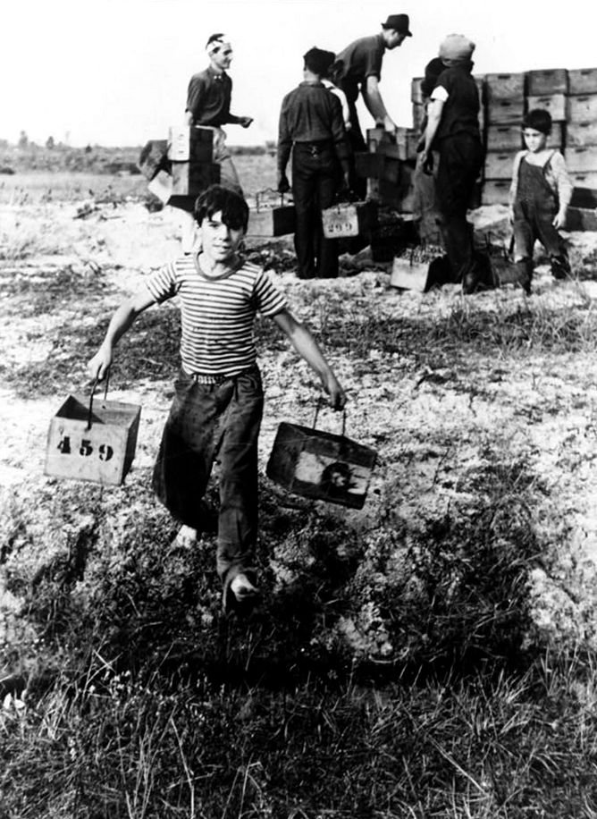 A boy leaving a cranberry checking station at a cranberry bog in Burlington County, New Jersey, October 1938.