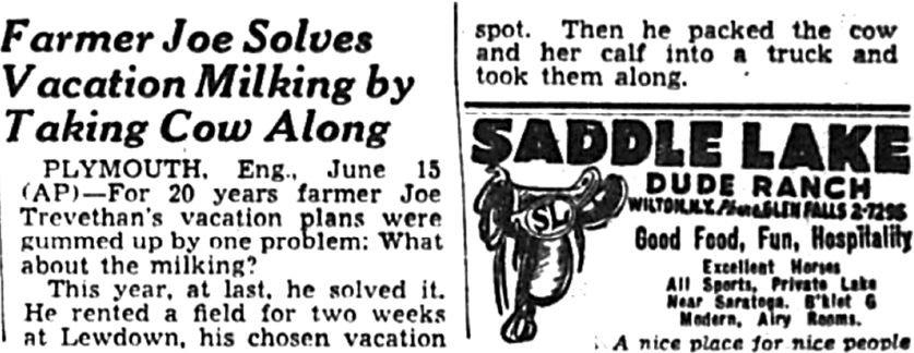 In 1949, a farmer took a cow with him on vacation.
