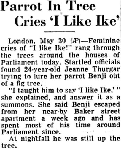 """In 1952, a parrot was taught to say """"I Like Ike."""""""