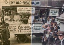 The war-bread wagon