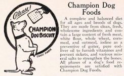 Champion Dog Foods ad
