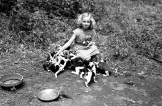 A girl in Missouri crouches in a wooded area with eight or more beagle puppies.