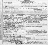 Llewelyn Hall's death certificate.