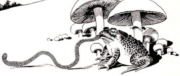 Tinker the Toad 1950